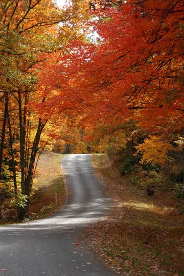 Fall-colors-at-Fall-Creek-Falls-copy