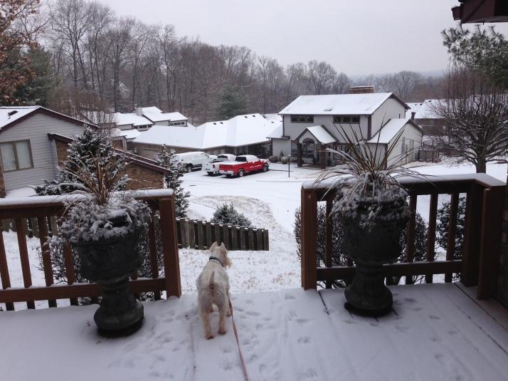 nick snow